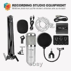 Kit microfono profesional condensador Audio Studio grabacion+Fuente alimentación