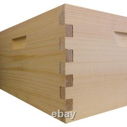 Amish Made Busy Bees'n' More 10 Frame Starter Beehive Kit 1 Boîte Profonde
